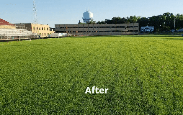 MSC-Natural-Turf-Services-Field-Renovation-After-Pic-1920w