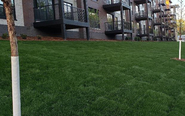 MSC-New-Construction-Bass-Lake-Rd-Apartments